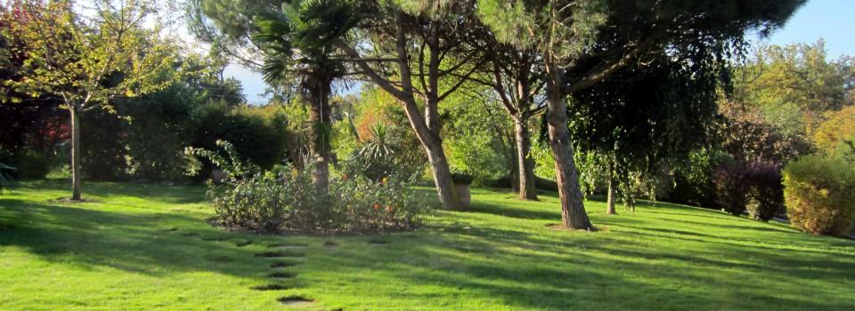 Maillefer paysagiste sa gen ve entreprise du paysage for Entretien jardin geneve