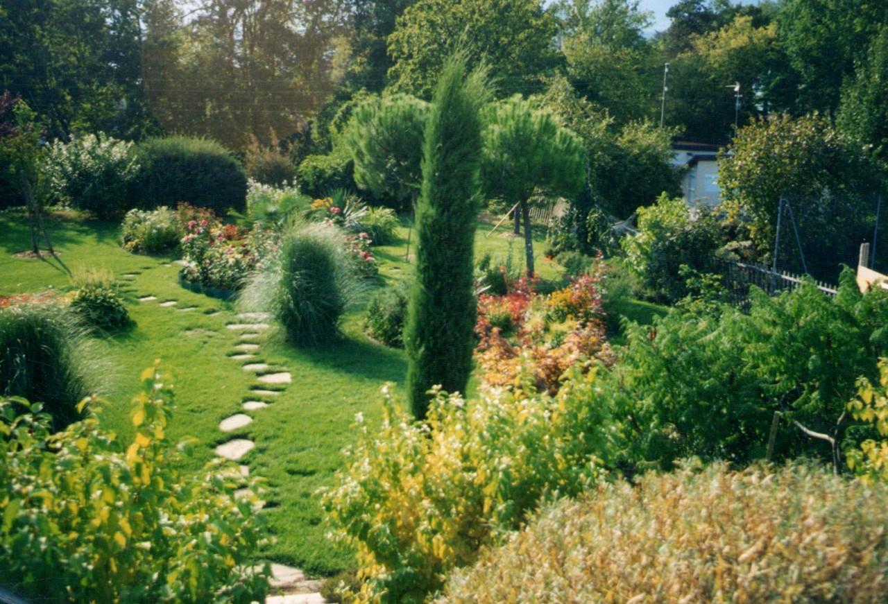 Plantation luxuriante pour un jardin d'ailleurs